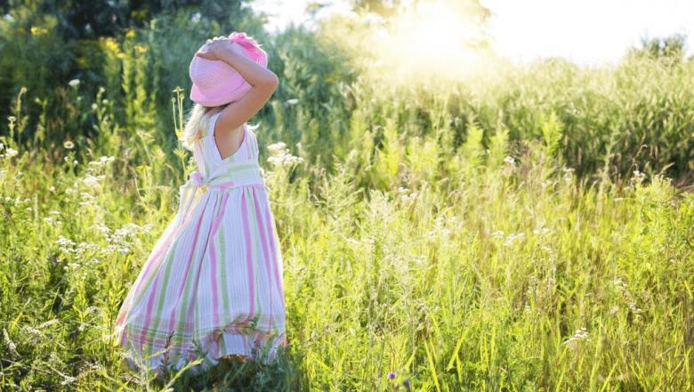 Wie schützen wir uns im Sommer vor unerwünschten Insekten?